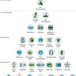 Elements-of-value-pyramid-Bain